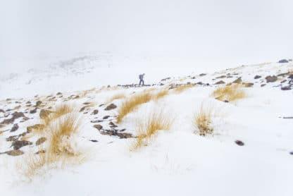 Eine Person läuft durch eine Schneelandschaft/Schneesturm. Unter dem Schnee schauen einzelne Gräser und einige Steine hervor. Damavand, Reisefotografie.